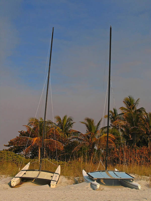 Sailing Boat Art Print featuring the photograph Catamaran Sailboats by Juergen Roth