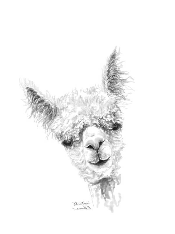 Llama Art Art Print featuring the drawing Christina by K Llamas