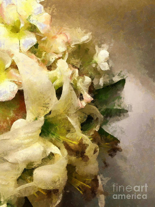 Lily Art Print featuring the photograph Christmas White Flowers by Claire Bull