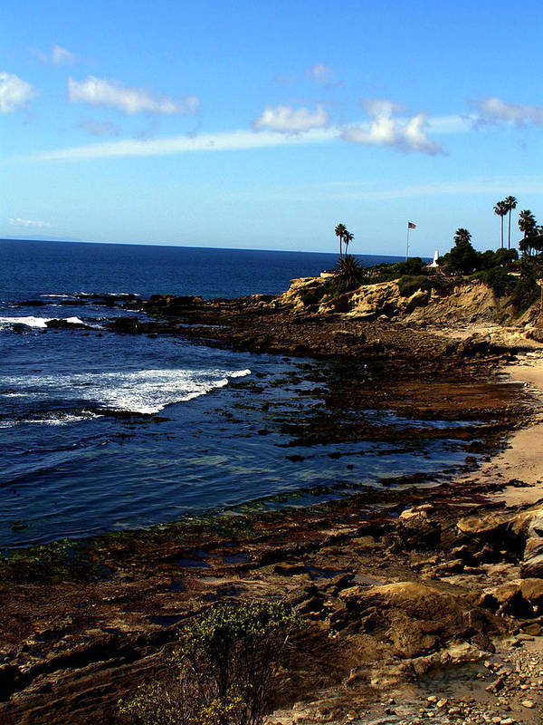 Laguna Art Print featuring the photograph Cliff Drive Laguna Beach by Christine Sullivan Cuozzo