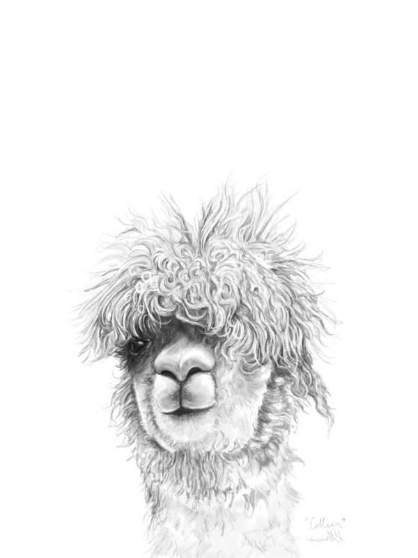 Llama Art Art Print featuring the drawing Colleen by K Llamas