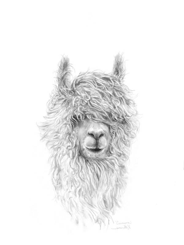 Llama Art Art Print featuring the drawing Crimson by K Llamas