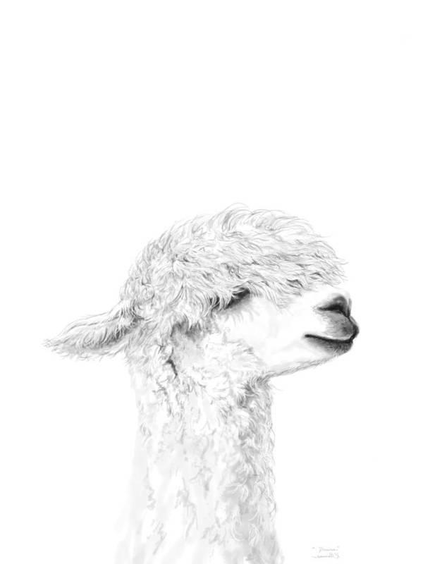 Llama Art Art Print featuring the drawing Danica by K Llamas