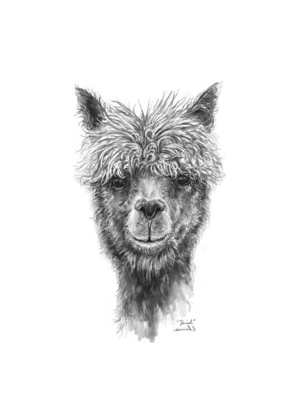 Llama Art Art Print featuring the drawing Daniel by K Llamas