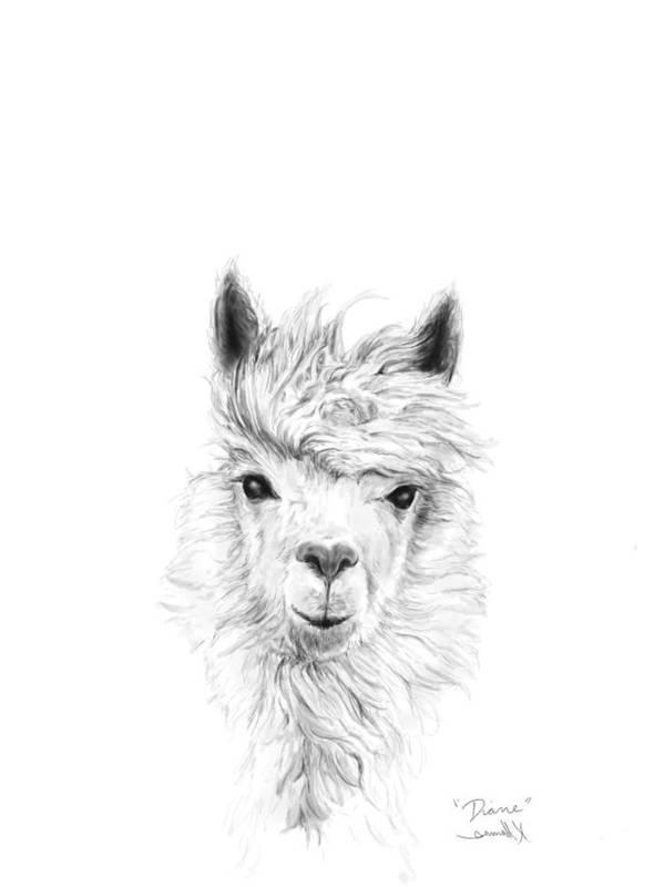Llama Art Art Print featuring the drawing Diane by K Llamas