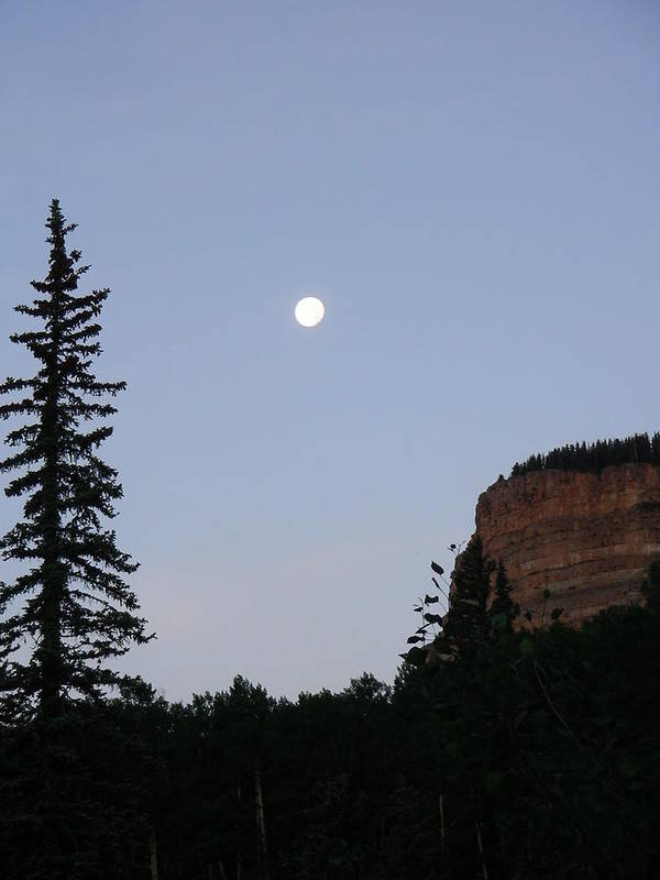 Nature Art Print featuring the photograph Durango by Peter McIntosh