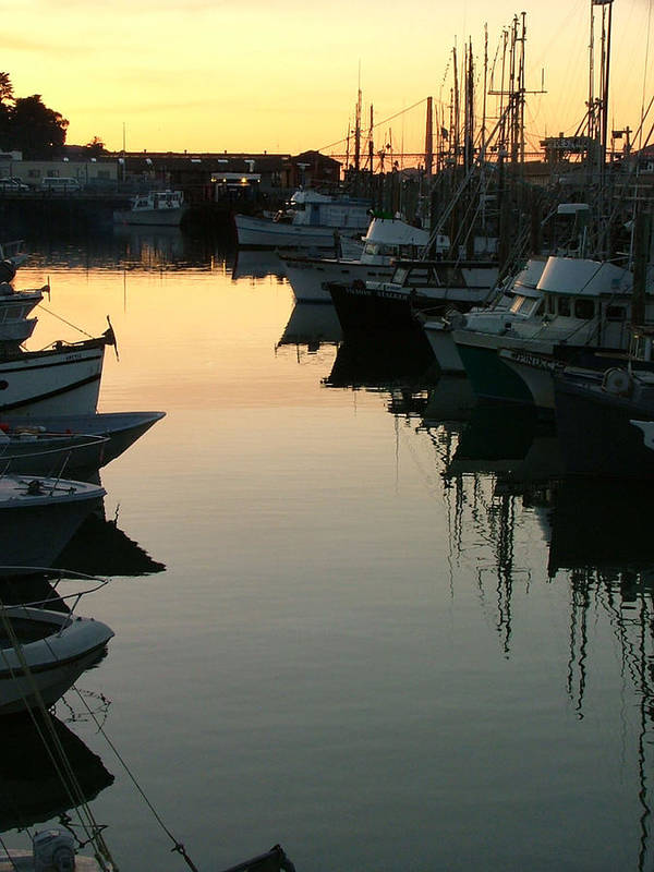 Waterfront Art Print featuring the photograph Dusk - Northern California by Donna Thomas
