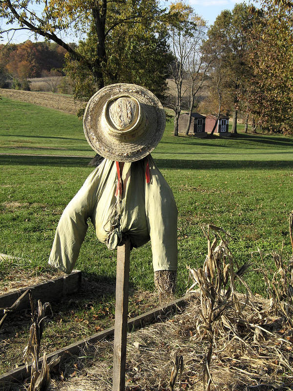 Farm Art Print featuring the photograph Early Autumn Scarecrow by William Kuta