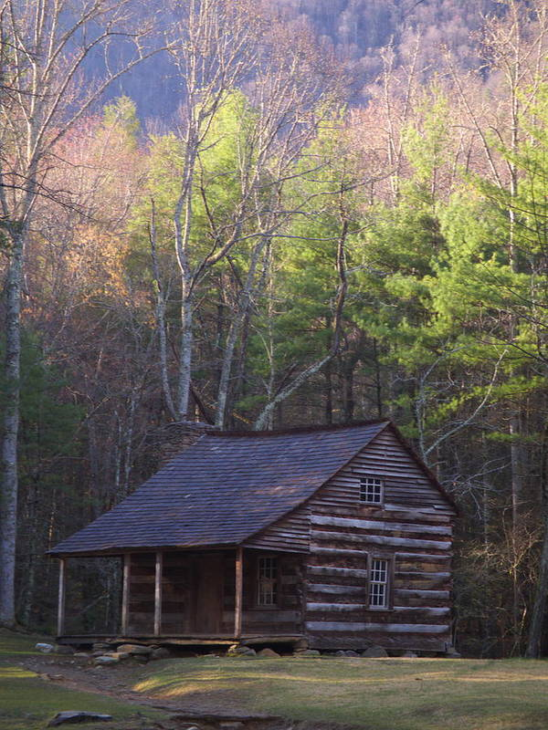 Scenic Art Print featuring the photograph Early Cove Homestead by Wayne Skeen