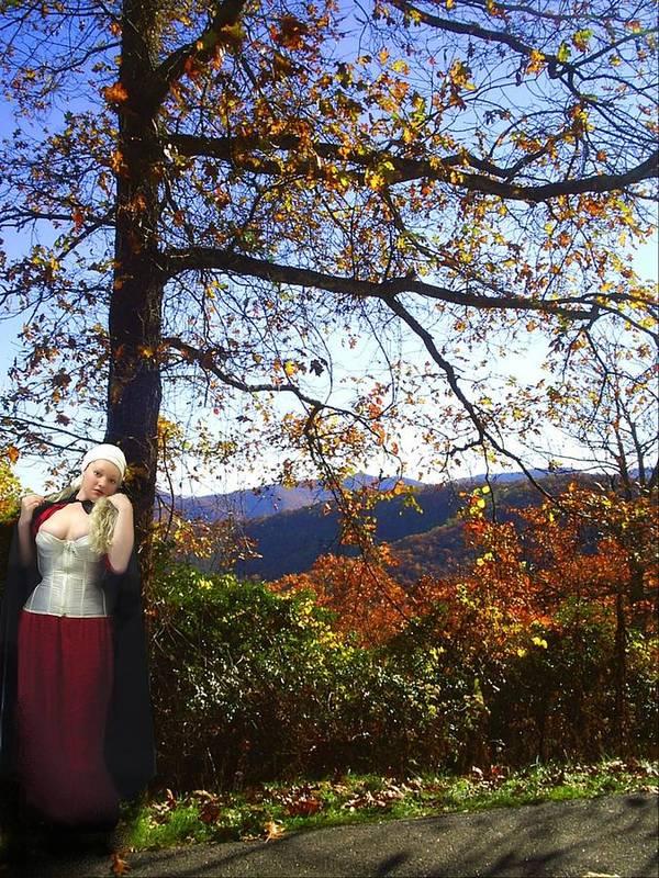Fall Art Print featuring the photograph Elegant Fall by Scarlett Royal