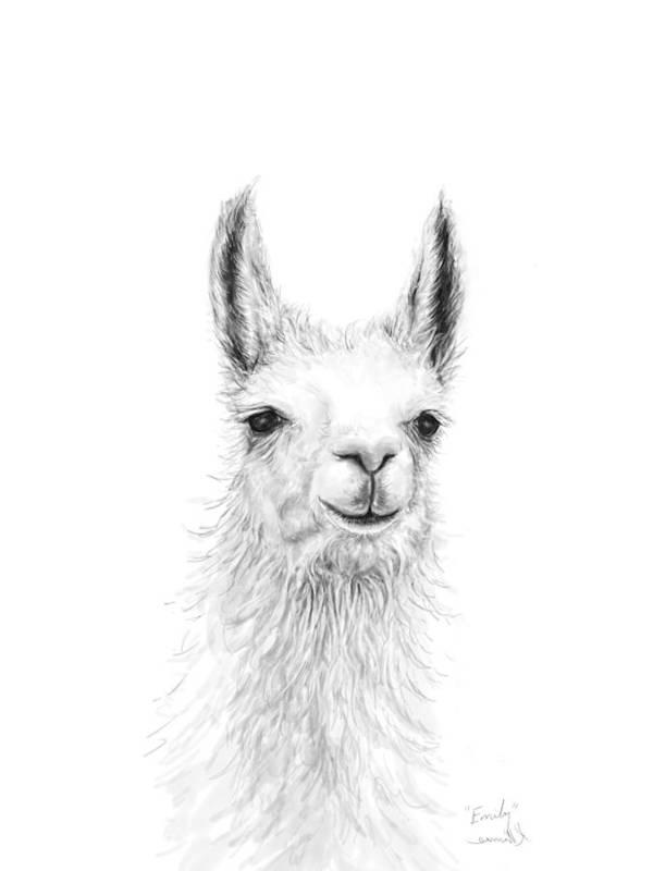 Llama Art Art Print featuring the drawing Emily by K Llamas