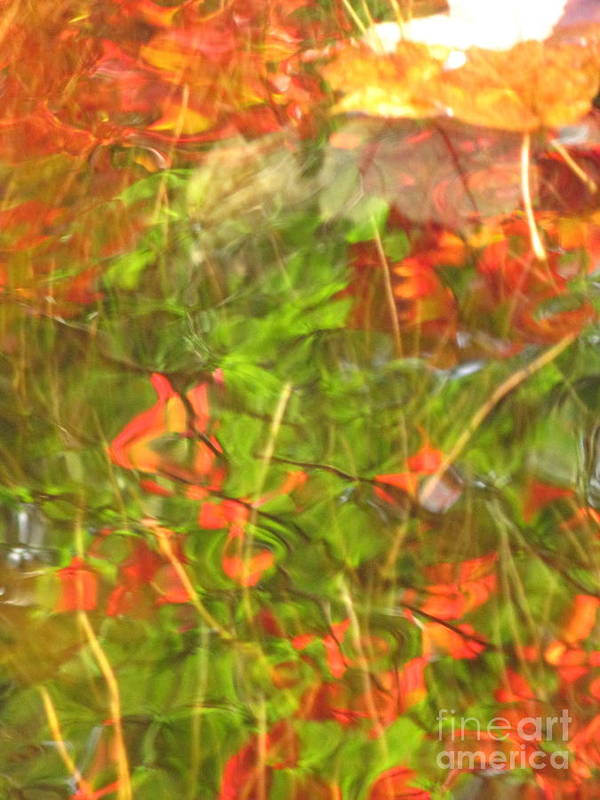 Abstract Art Print featuring the photograph Entangled Adrift by Sybil Staples