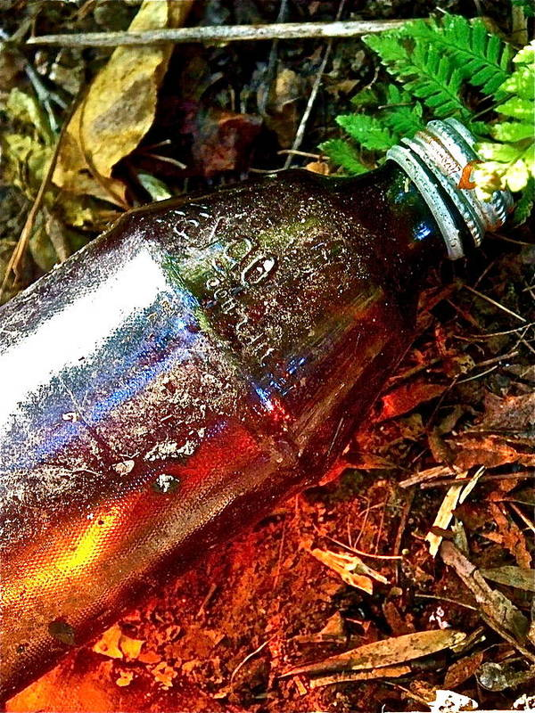 Garbage Art Print featuring the photograph Faygo Luminescence by Jennifer Addington