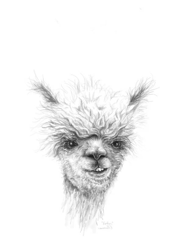 Llama Art Art Print featuring the drawing Fischer by K Llamas