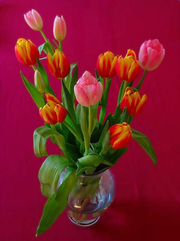 Still Life Art Print featuring the photograph Flower Bouquet by Juergen Roth