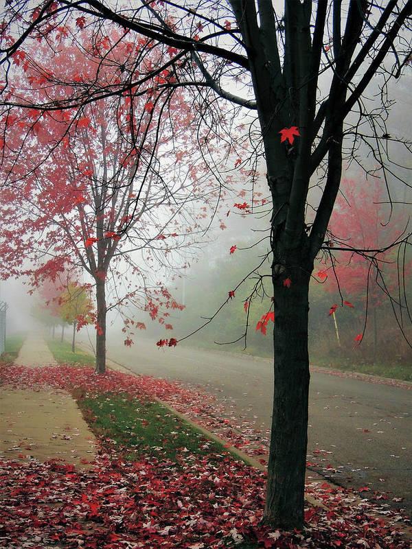 Autumn Art Print featuring the photograph Fog On A November Morning by Karen Majkrzak