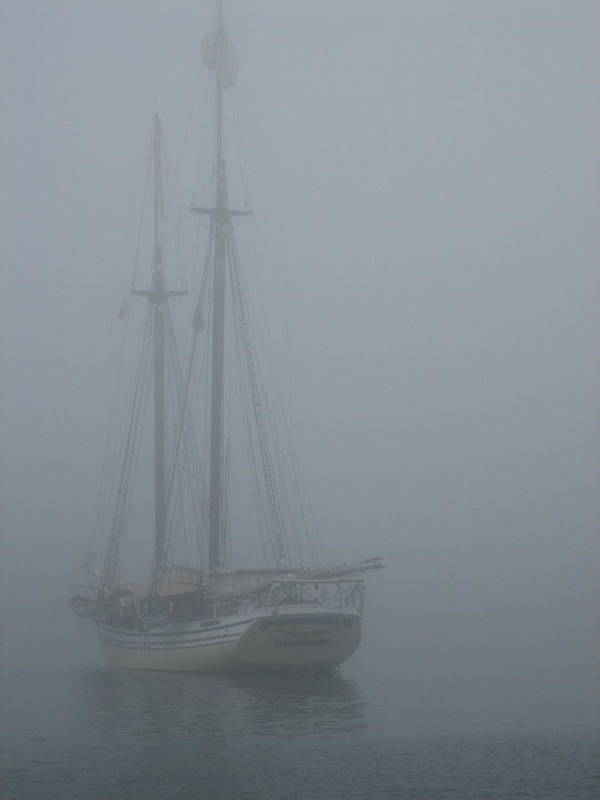 Maine Art Print featuring the photograph Foggy Morning by Debra LePage