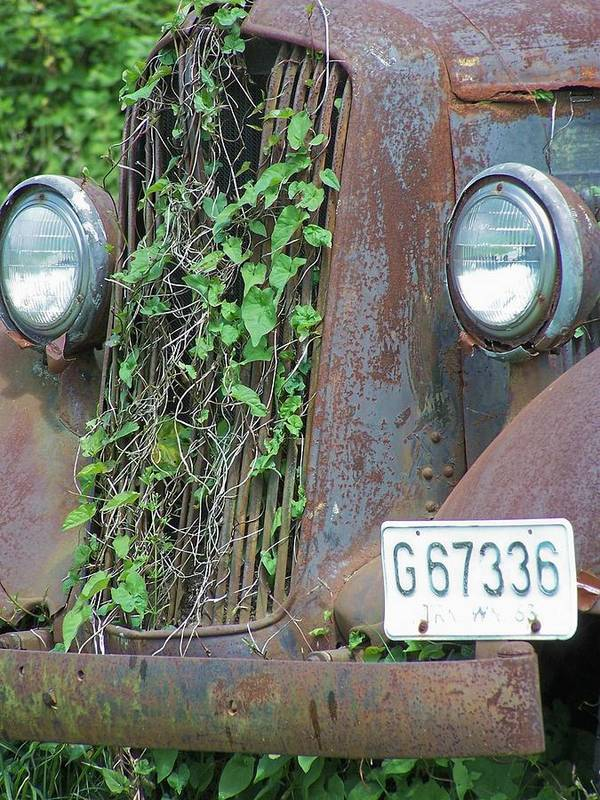 Ford Art Print featuring the photograph Ford Grill by Gene Ritchhart
