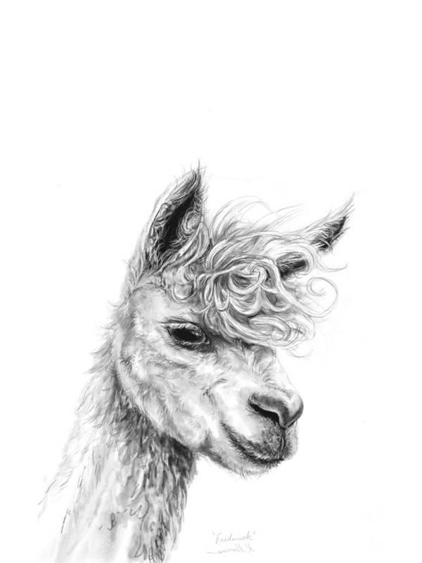 Llama Art Art Print featuring the drawing Frederick by K Llamas
