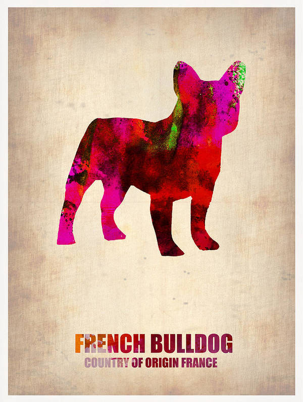 French Bulldog Print featuring the painting French Bulldog Poster by Naxart Studio
