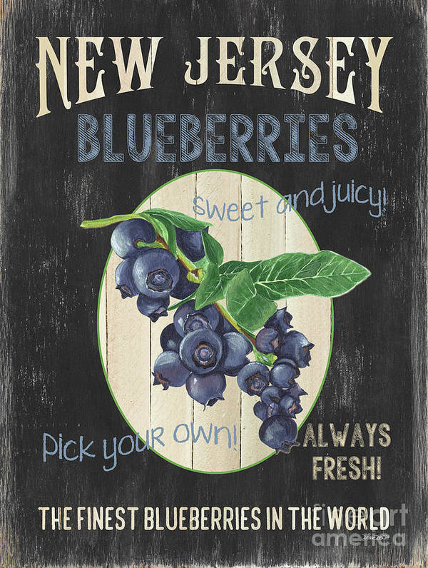 Blueberries Art Print featuring the painting Fresh Berries 1 by Debbie DeWitt