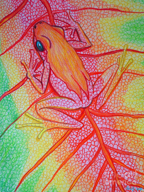 Frog On Leaf Art Print featuring the drawing Frog On Leaf by Nick Gustafson