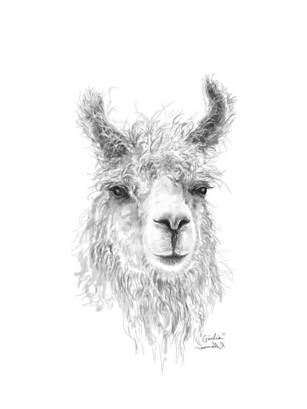 Llama Art Art Print featuring the drawing Giulia by K Llamas