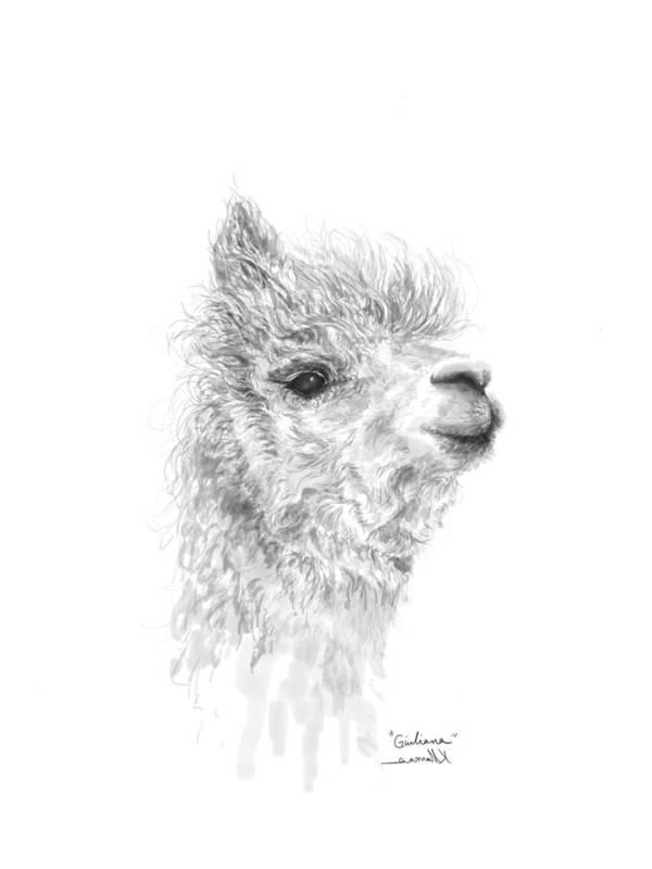Llama Art Art Print featuring the drawing Giuliana by K Llamas