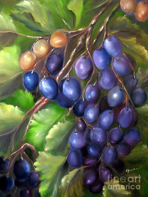 Grapes Art Print featuring the painting Grapevine by Carol Sweetwood