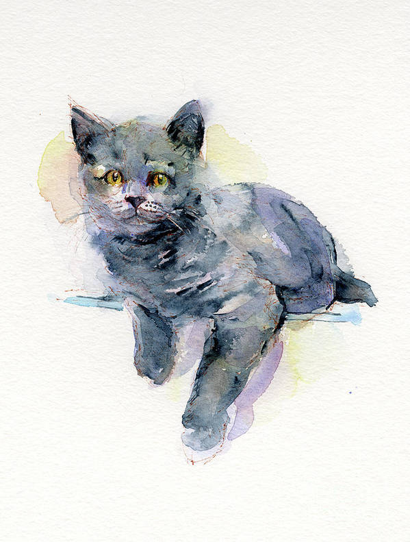 Gray Art Print featuring the painting Grey Kitten by John Keeling