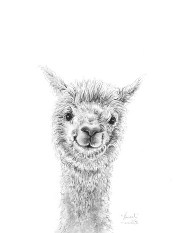 Llama Art Art Print featuring the drawing Hannah by K Llamas