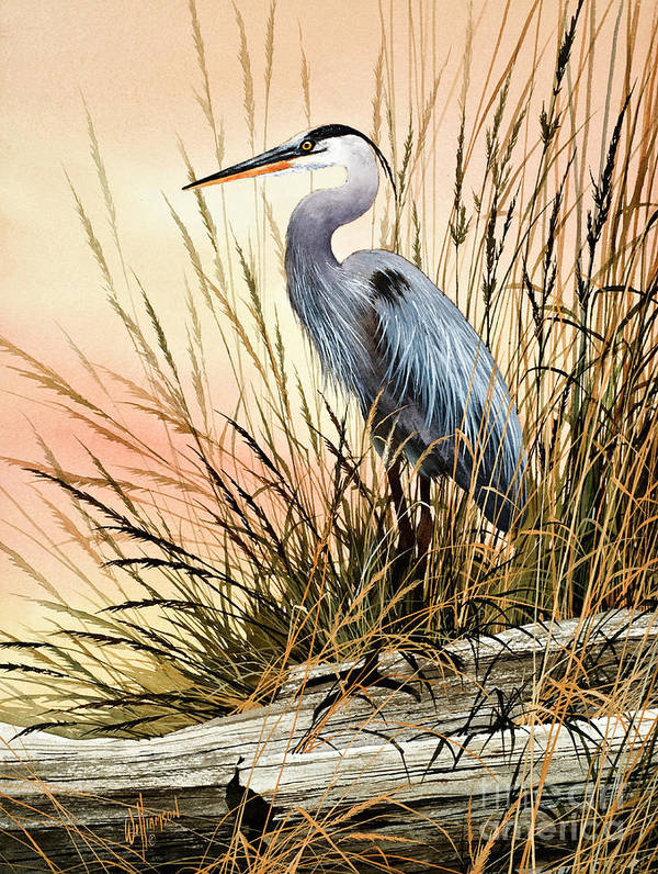 Heron Art Print featuring the painting Heron Sunset by James Williamson