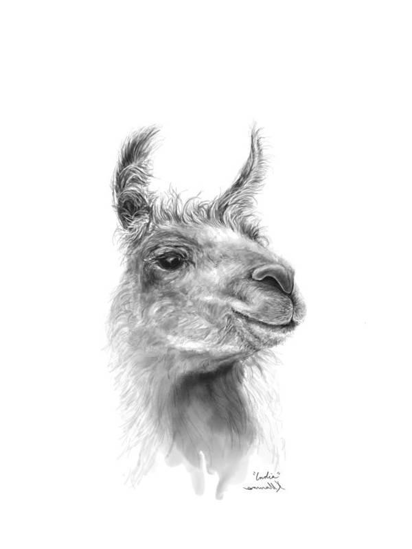 #artshow #artist #blackandwhite #modernart #contemporary #linkinbio #animal #farm #artexhibit #design #interiordesign #printsavailable #gift #llamas #llamasofinstagram #fineart #drawing #artprints #nashvilleartist #home #shop #decor #llamalove #llamalife #llamaart Art Print featuring the drawing India by K Llamas