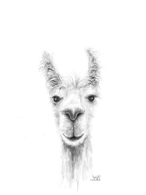 Llama Art Art Print featuring the drawing Izaiah by K Llamas
