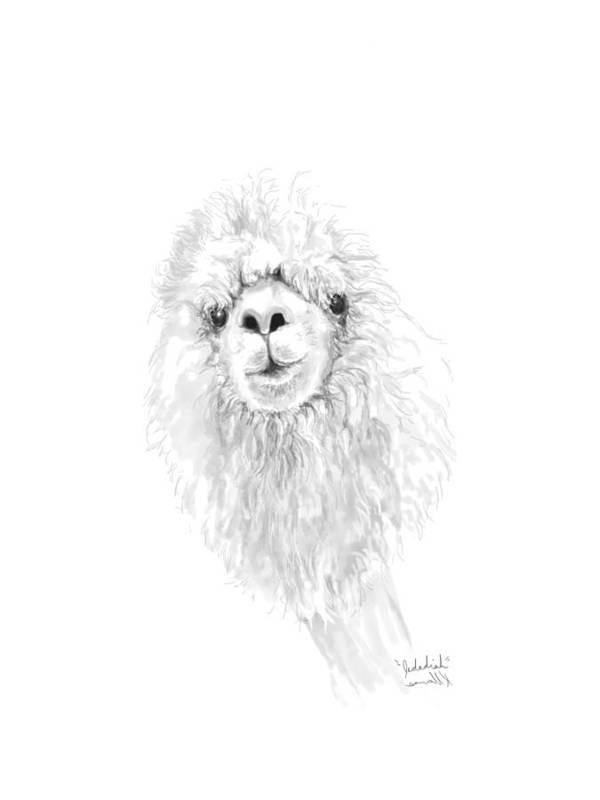 Llama Art Art Print featuring the drawing Jedadiah by K Llamas