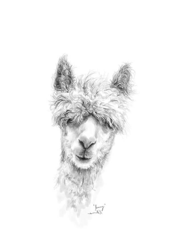 Llama Art Art Print featuring the drawing Jenny by K Llamas