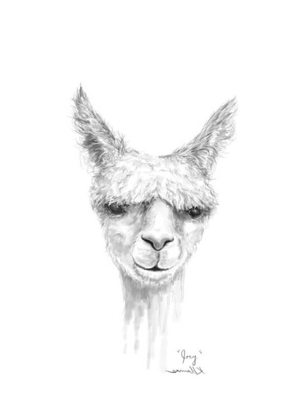 Llama Art Art Print featuring the drawing Joey by K Llamas