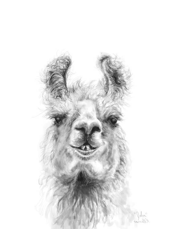 Llama Art Art Print featuring the drawing John by K Llamas