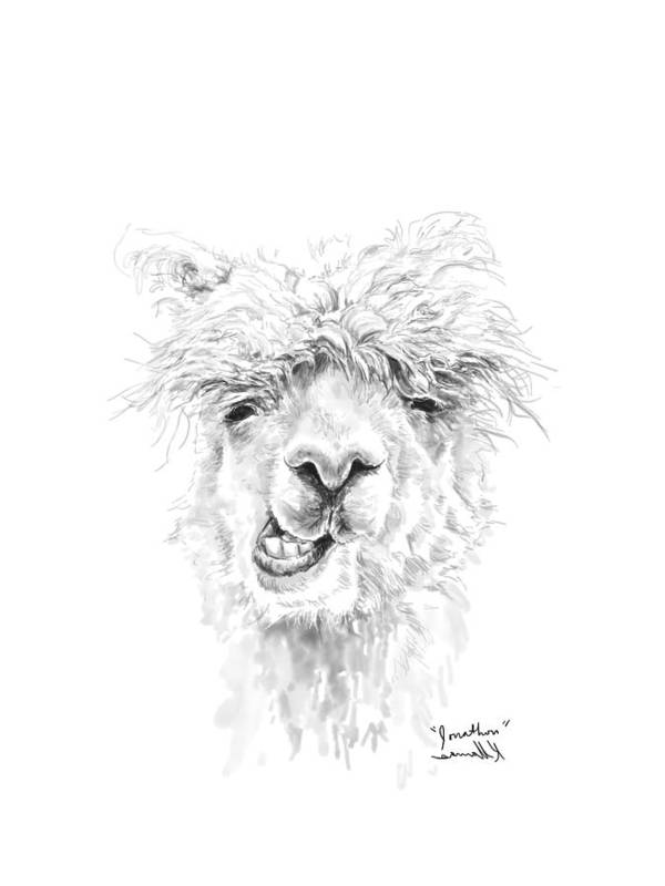 Llama Art Art Print featuring the drawing Jonathon by K Llamas