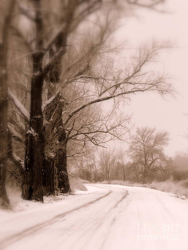 Winter Art Print featuring the photograph Just Around The Bend by Carol Groenen