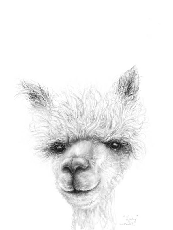 Llama Art Art Print featuring the drawing Kady by K Llamas