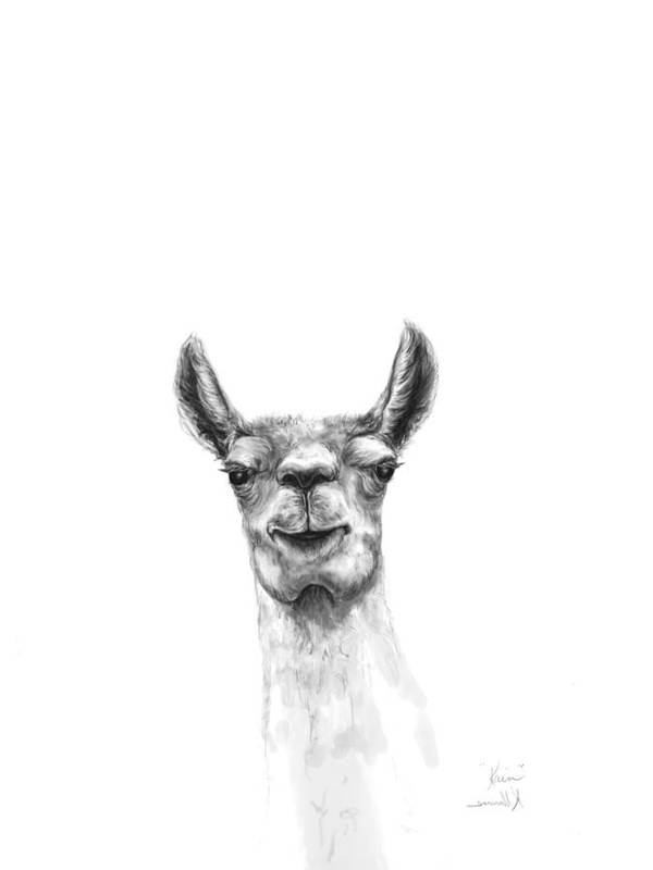 Llama Art Art Print featuring the drawing Kain by K Llamas
