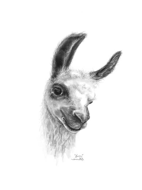 Llama Art Art Print featuring the drawing Karin by K Llamas