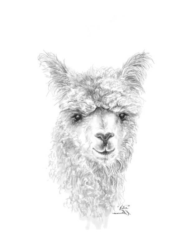 Llama Art Art Print featuring the drawing Katie by K Llamas