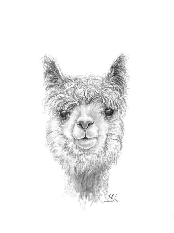 Art Print featuring the drawing Kellea by K Llamas