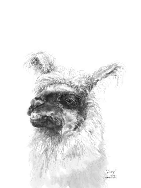 Llama Art Art Print featuring the drawing Kerry by K Llamas