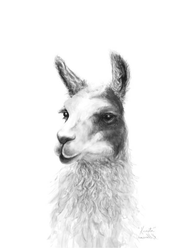 Llama Art Art Print featuring the drawing Krista by K Llamas
