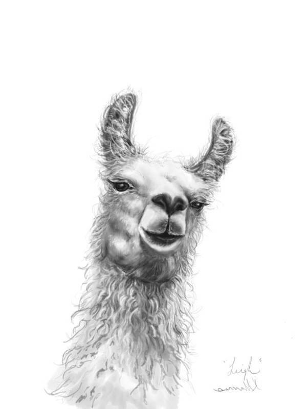 Llama Art Art Print featuring the drawing Leigh by K Llamas