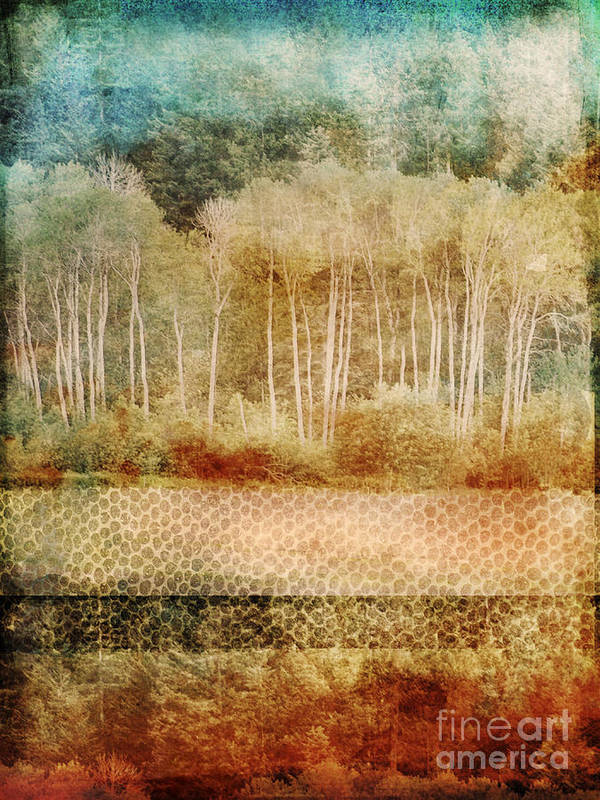 Trees Art Print featuring the photograph Loss Of Memory by Tara Turner