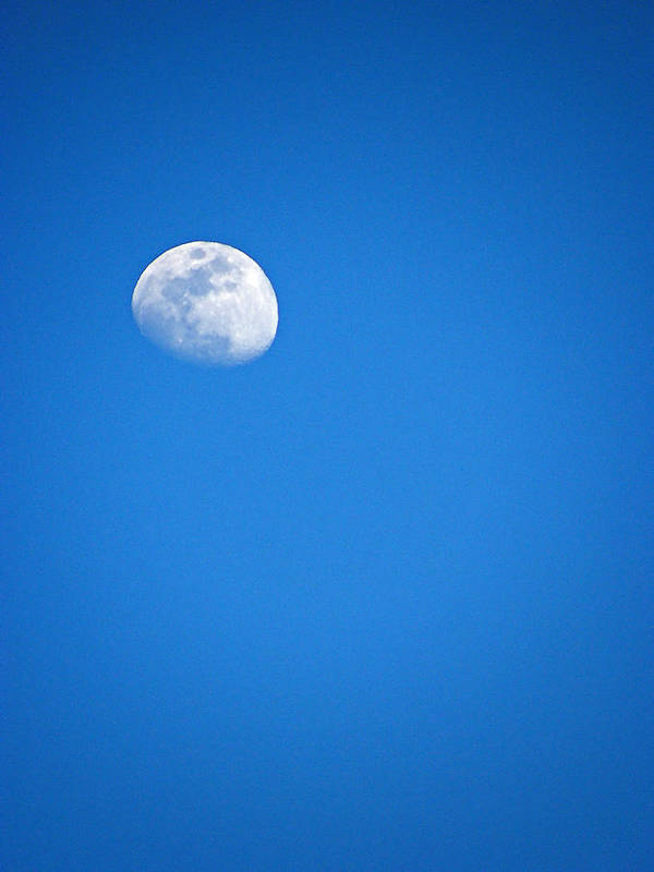 Moon Art Print featuring the photograph Magnificent Maui Moon by Elizabeth Hoskinson